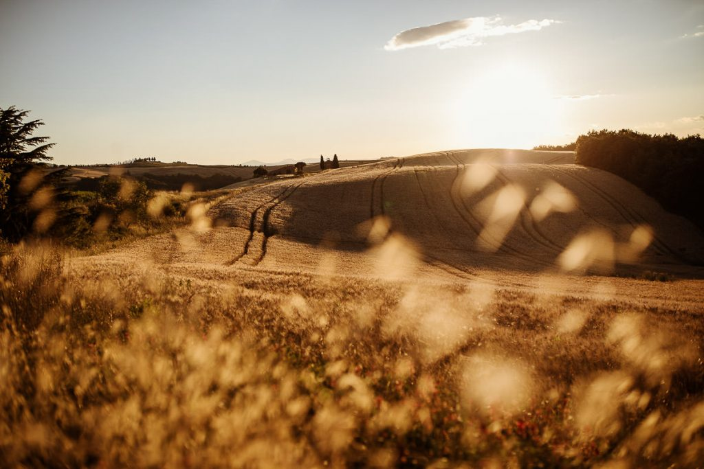 engagement photography pienza valdorcia 24